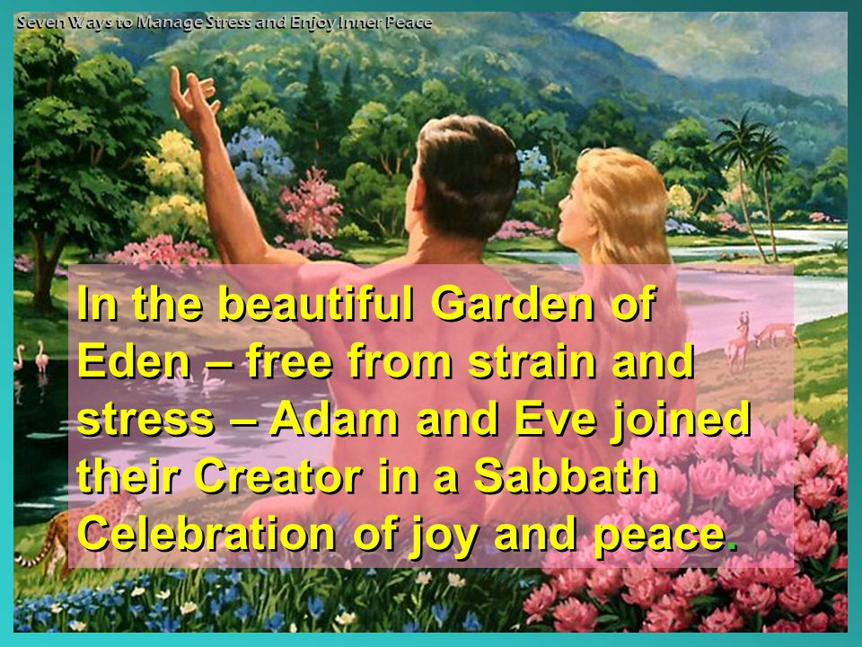 In the beautiful Garden of Eden – free from strain and stress – Adam and Eve joined their Creator in a Sabbath Celebration of joy and peace.
