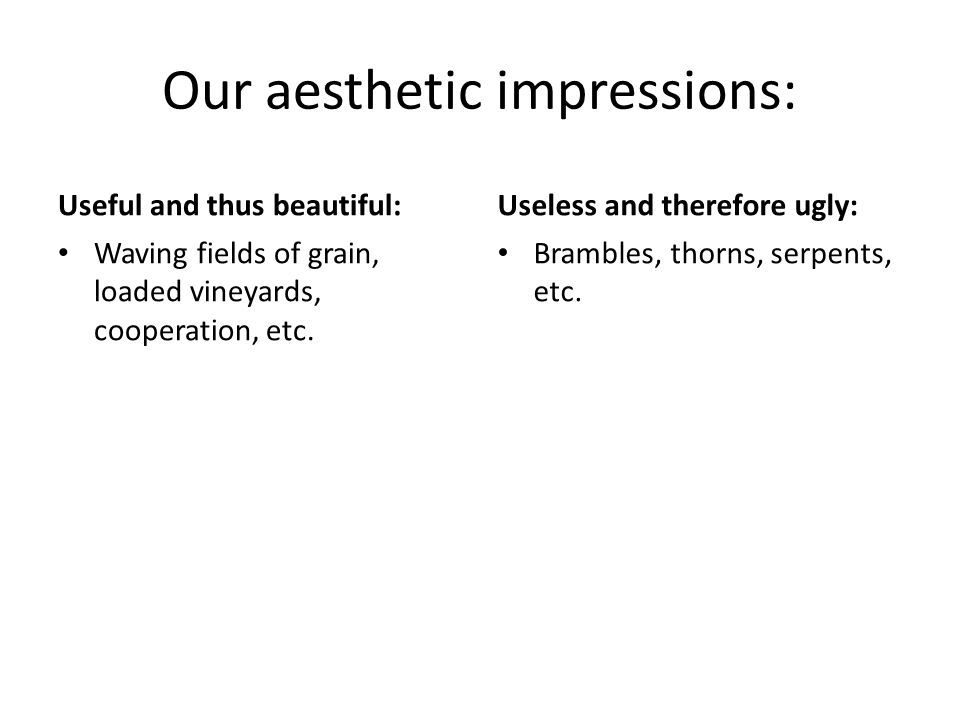 Our aesthetic impressions: Useful and thus beautiful: Waving fields of grain, loaded vineyards, cooperation, etc.