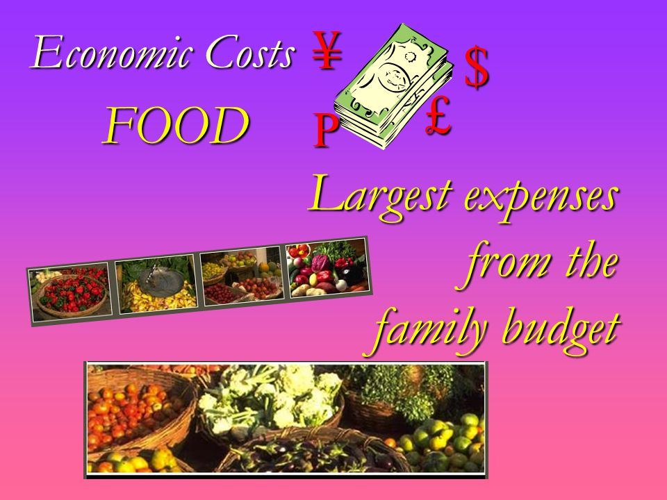Economic Costs $ £¥P FOOD Largest expenses from the family budget