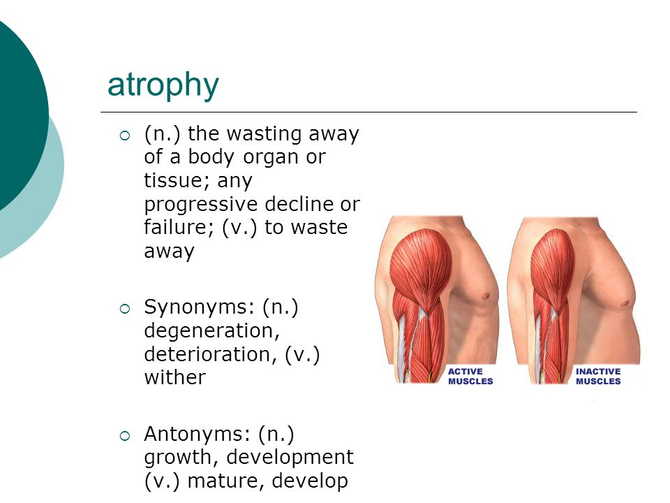 atrophy  (n.) the wasting away of a body organ or tissue; any progressive decline or failure; (v.) to waste away  Synonyms: (n.) degeneration, deter