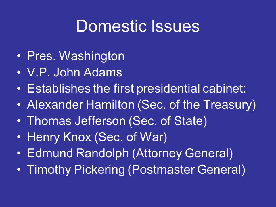 Domestic Issues Pres. Washington V.P.
