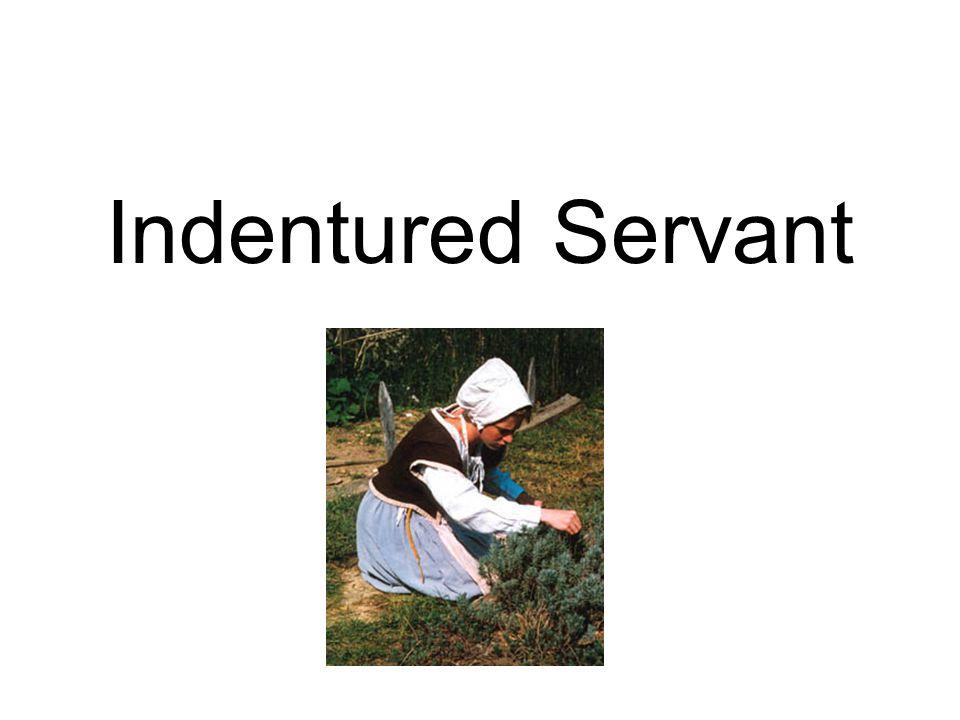 Indentured Servant