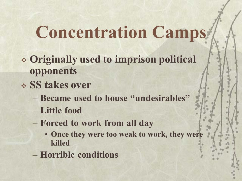 Concentration Camps  Originally used to imprison political opponents  SS takes over –Became used to house undesirables –Little food –Forced to work from all day Once they were too weak to work, they were killed –Horrible conditions