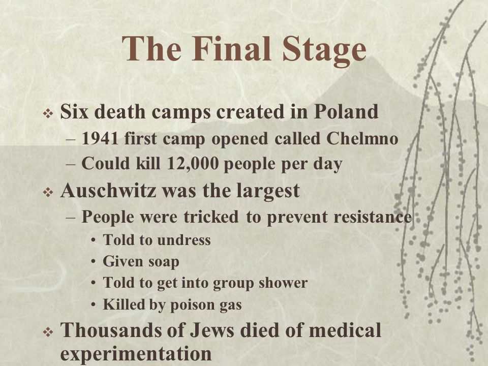 The Final Stage  Six death camps created in Poland –1941 first camp opened called Chelmno –Could kill 12,000 people per day  Auschwitz was the largest –People were tricked to prevent resistance Told to undress Given soap Told to get into group shower Killed by poison gas  Thousands of Jews died of medical experimentation