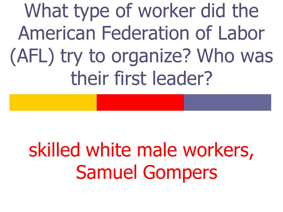 What type of worker did the American Federation of Labor (AFL) try to organize.