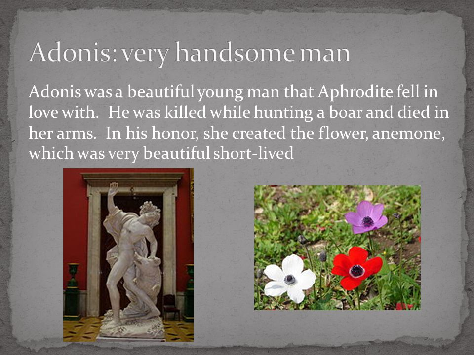Adonis was a beautiful young man that Aphrodite fell in love with.