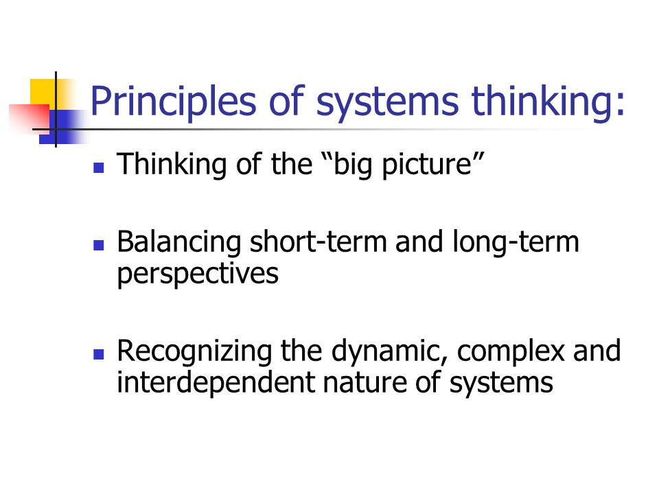 Principles of systems thinking: Thinking of the big picture Balancing short-term and long-term perspectives Recognizing the dynamic, complex and interdependent nature of systems