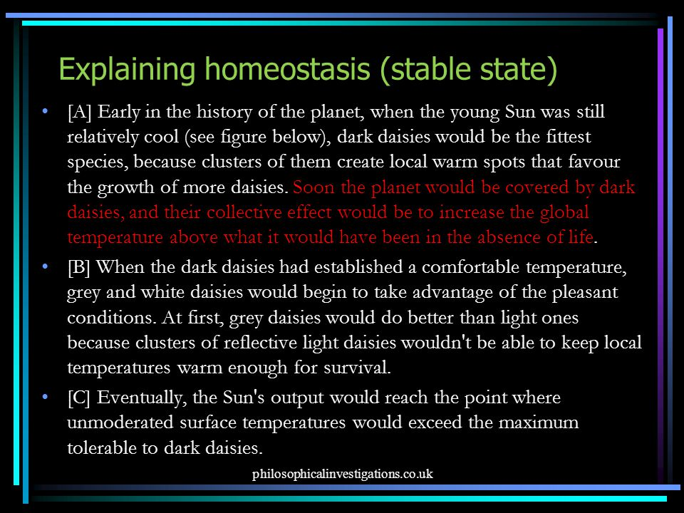 Explaining homeostasis (stable state) [A] Early in the history of the planet, when the young Sun was still relatively cool (see figure below), dark daisies would be the fittest species, because clusters of them create local warm spots that favour the growth of more daisies.