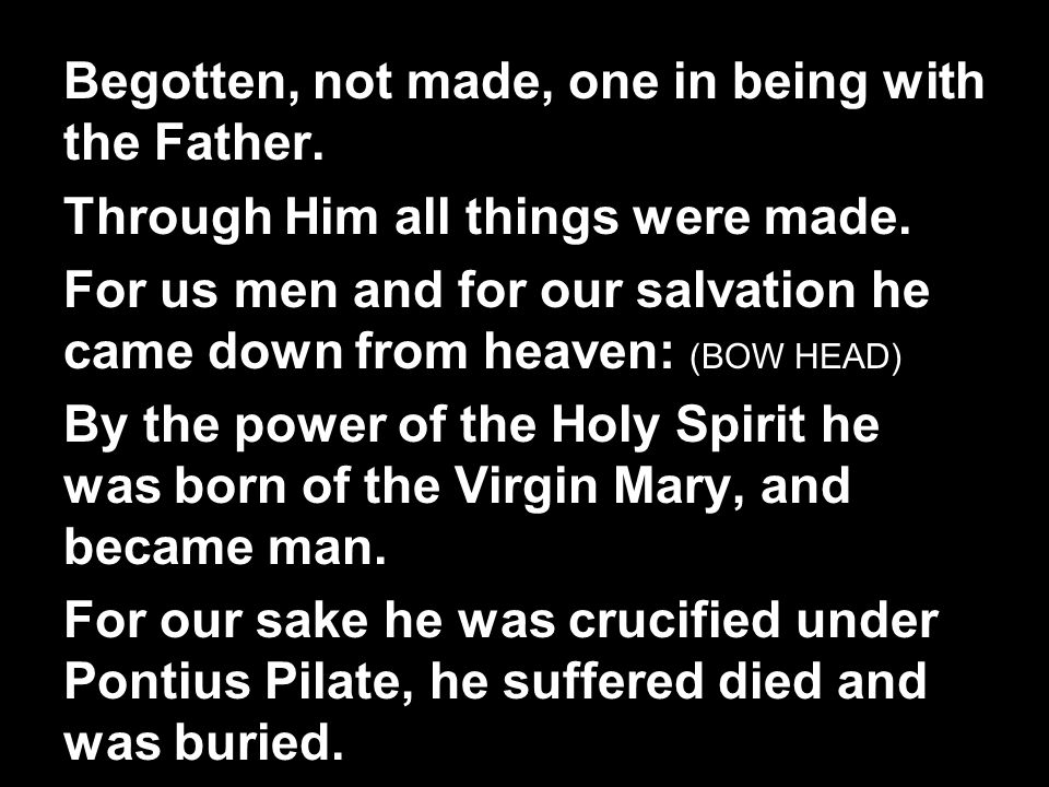 Begotten, not made, one in being with the Father. Through Him all things were made.