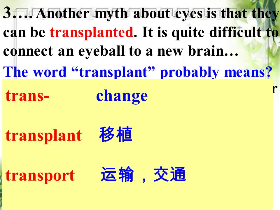 3…. Another myth about eyes is that they can be transplanted.
