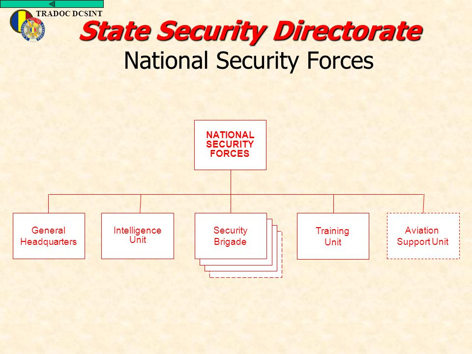 TRADOC DCSINT State Security Directorate State Security Directorate National Security Forces General Headquarters Intelligence Unit Training Unit Avia