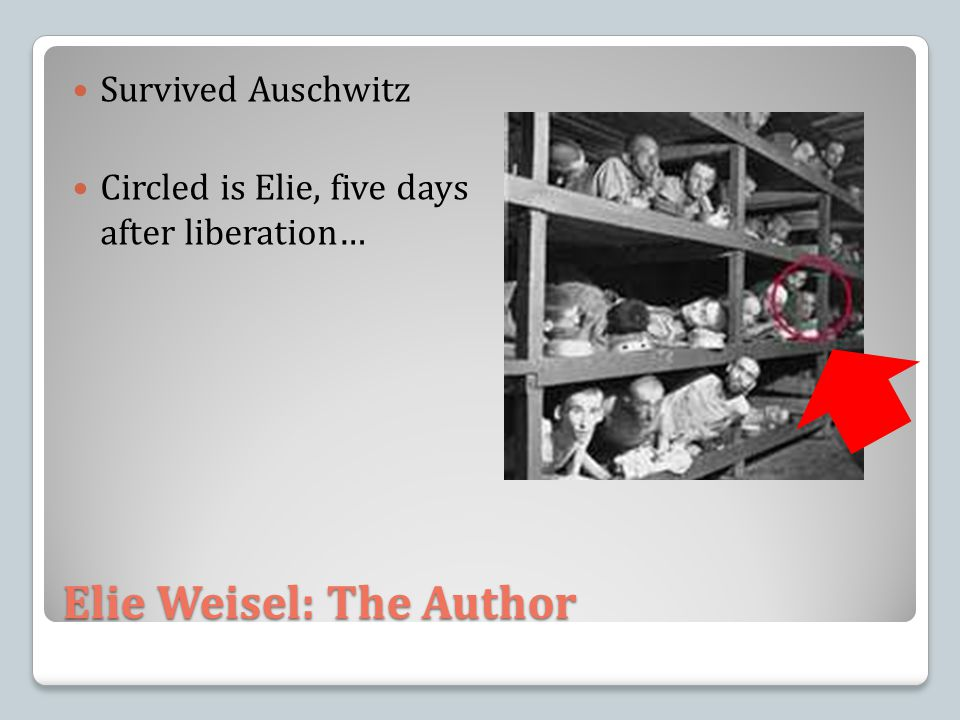 Elie Weisel: The Author Survived Auschwitz Circled is Elie, five days after liberation…