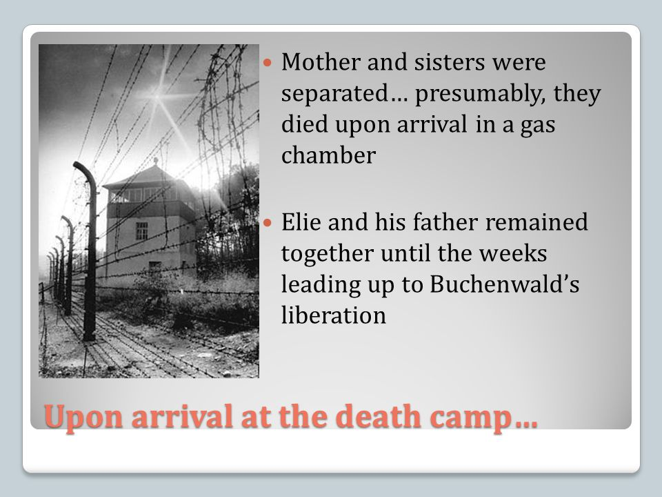 Upon arrival at the death camp… Mother and sisters were separated… presumably, they died upon arrival in a gas chamber Elie and his father remained together until the weeks leading up to Buchenwald's liberation