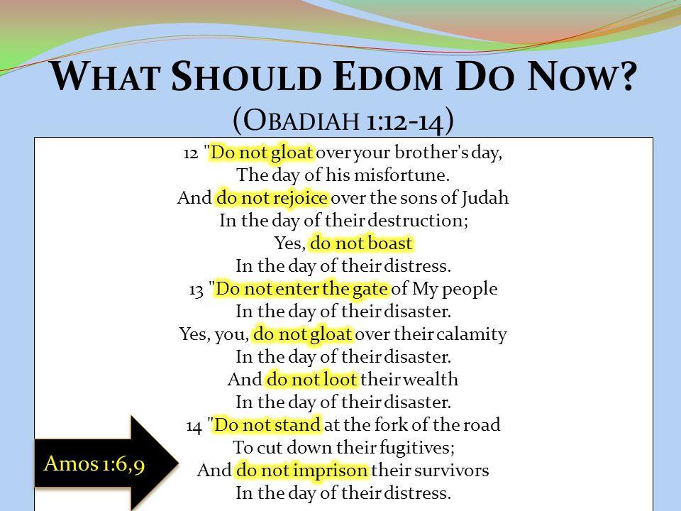 W HAT S HOULD E DOM D O N OW ? (O BADIAH 1:12-14) Amos 1:6,9