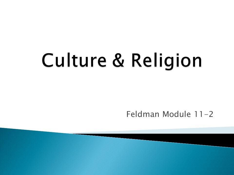 Feldman Module 11-2