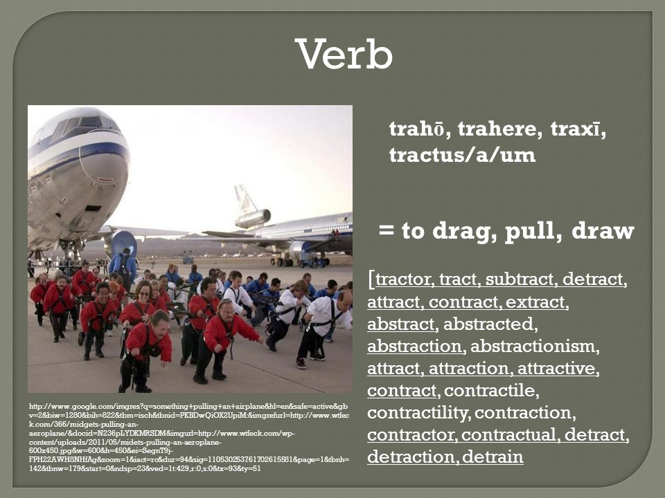 Verb http://www.google.com/imgres q=something+pulling+an+airplane&hl=en&safe=active&gb v=2&biw=1280&bih=822&tbm=isch&tbnid=PKBDwQiOX2UpiM:&imgrefurl=http://www.wtfec k.com/366/midgets-pulling-an- aeroplane/&docid=N236pLYDKMRSDM&imgurl=http://www.wtfeck.com/wp- content/uploads/2011/05/midets-pulling-an-aeroplane- 600x450.jpg&w=600&h=450&ei=SegnT9j- FPH22AWH8NHfAg&zoom=1&iact=rc&dur=94&sig=110530253761702615581&page=1&tbnh= 142&tbnw=179&start=0&ndsp=23&ved=1t:429,r:0,s:0&tx=93&ty=51 trah ō, trahere, trax ī, tractus/a/um = to drag, pull, draw [ tractor, tract, subtract, detract, attract, contract, extract, abstract, abstracted, abstraction, abstractionism, attract, attraction, attractive, contract, contractile, contractility, contraction, contractor, contractual, detract, detraction, detrain