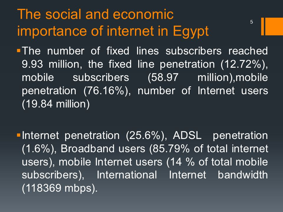 The social and economic importance of internet in Egypt  The number of fixed lines subscribers reached 9.93 million, the fixed line penetration (12.72%), mobile subscribers (58.97 million),mobile penetration (76.16%), number of Internet users (19.84 million)  Internet penetration (25.6%), ADSL penetration (1.6%), Broadband users (85.79% of total internet users), mobile Internet users (14 % of total mobile subscribers), International Internet bandwidth (118369 mbps).