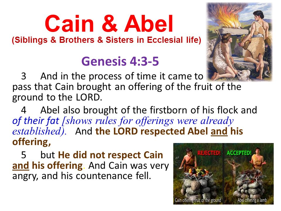 Cain & Abel Genesis 4:3-5 3And in the process of time it came to pass that Cain brought an offering of the fruit of the ground to the LORD. 4Abel also