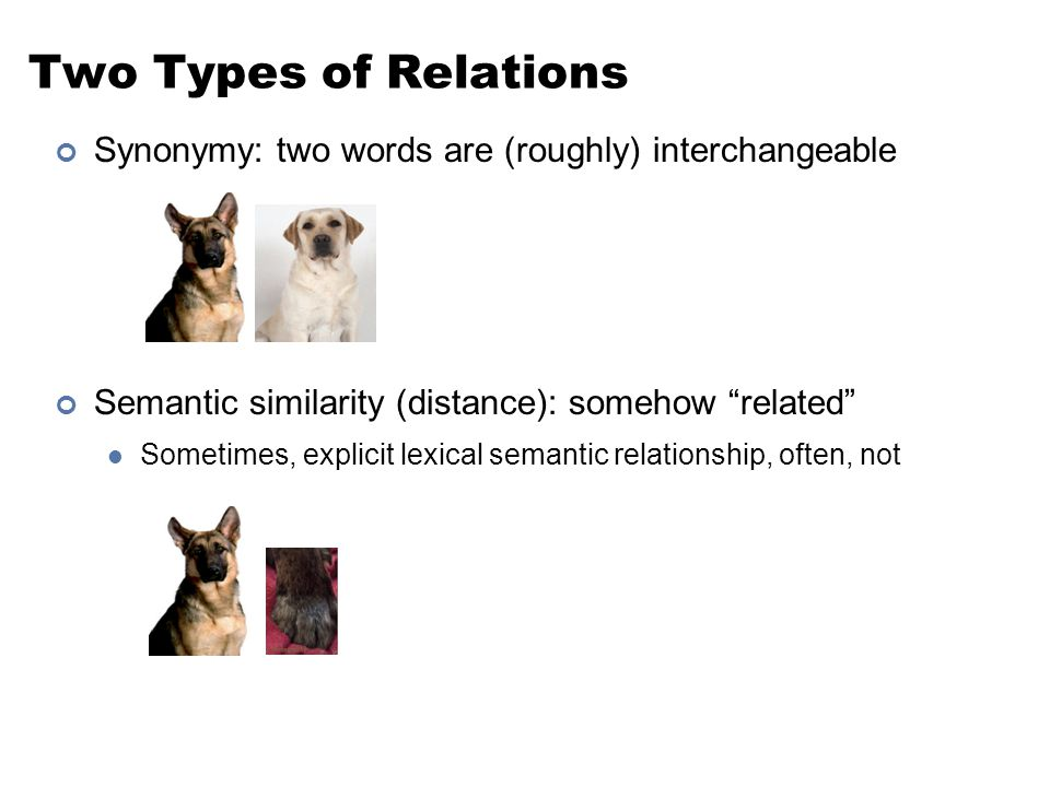 "Two Types of Relations Synonymy: two words are (roughly) interchangeable Semantic similarity (distance): somehow ""related"" Sometimes, explicit lexical"