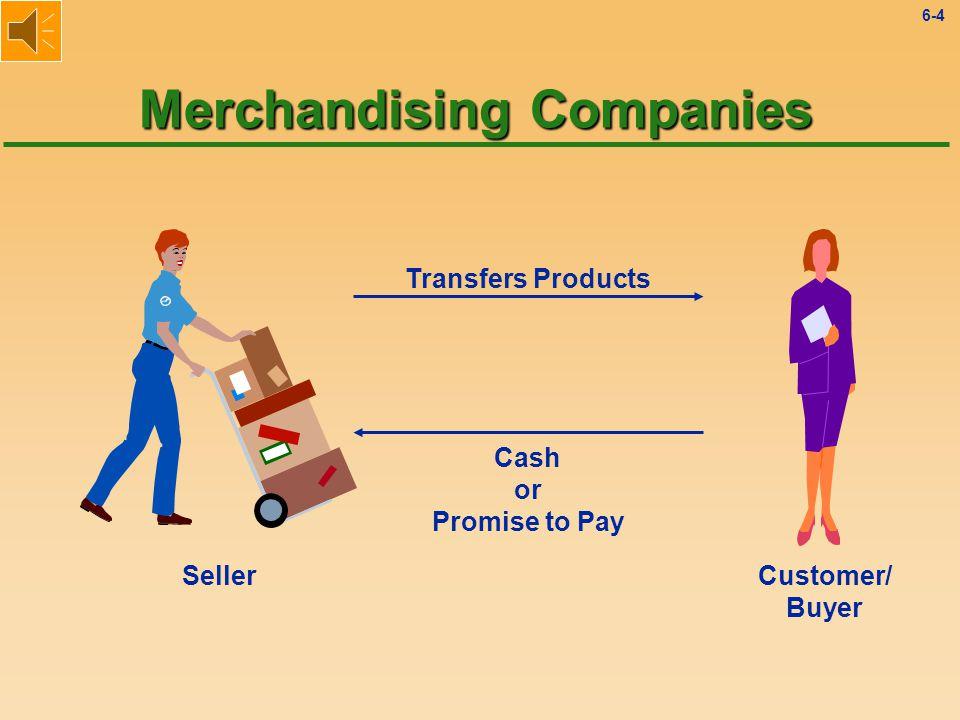 6-3 Service Organizations vs.