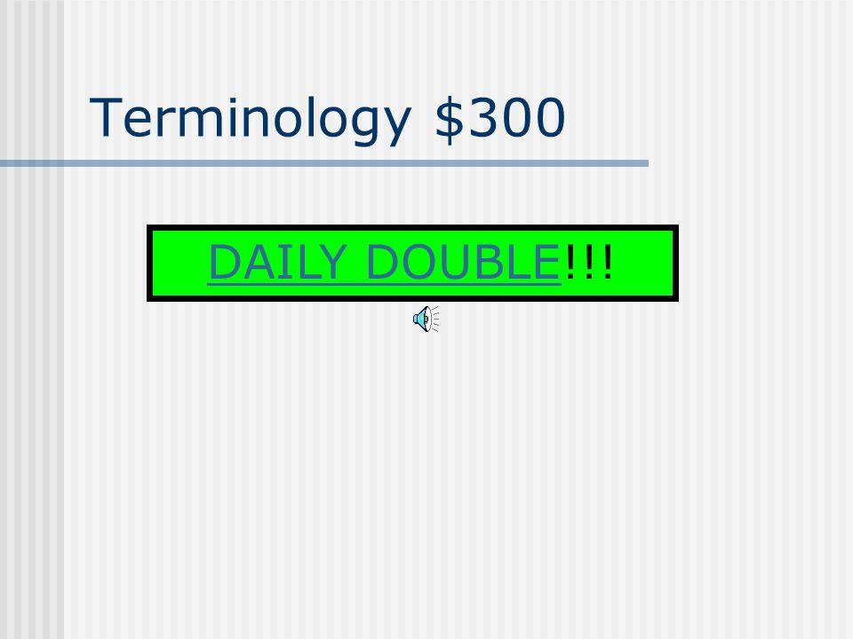 Terminology $200 Alpha Corp.