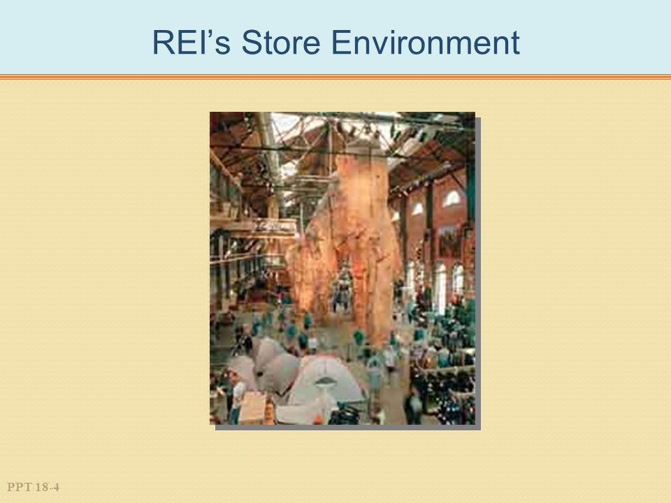 PPT 18-4 REI's Store Environment