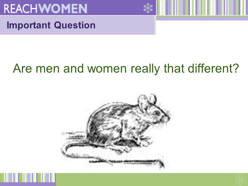 Important Question Are men and women really that different?