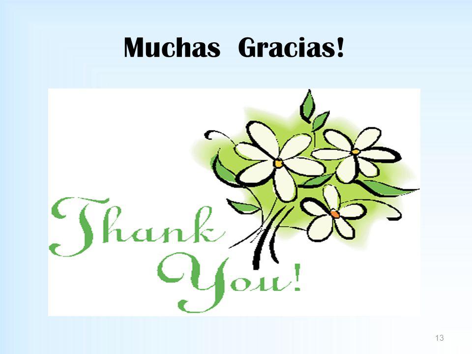 Muchas Gracias! 13