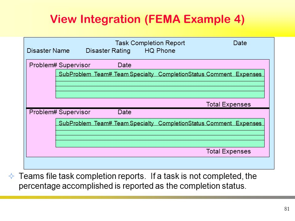 View Integration (FEMA Example 4)  Teams file task completion reports.