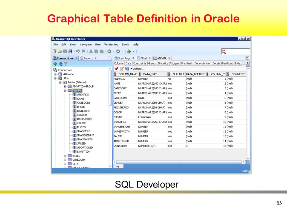 85 Graphical Table Definition in Oracle SQL Developer