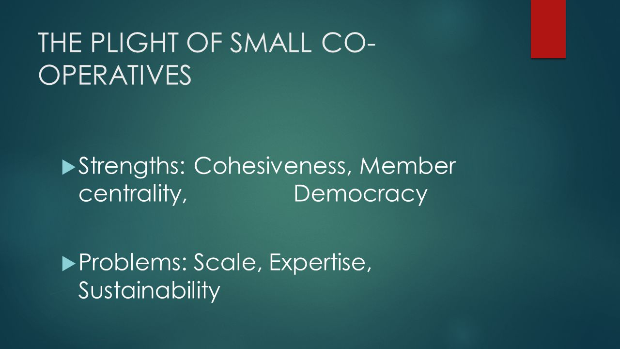 THE PLIGHT OF SMALL CO- OPERATIVES  Strengths: Cohesiveness, Member centrality, Democracy  Problems: Scale, Expertise, Sustainability