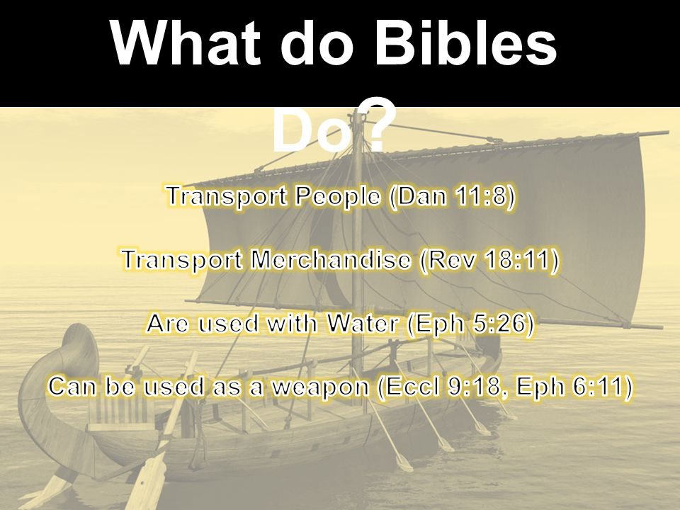 What do Bibles Do ?
