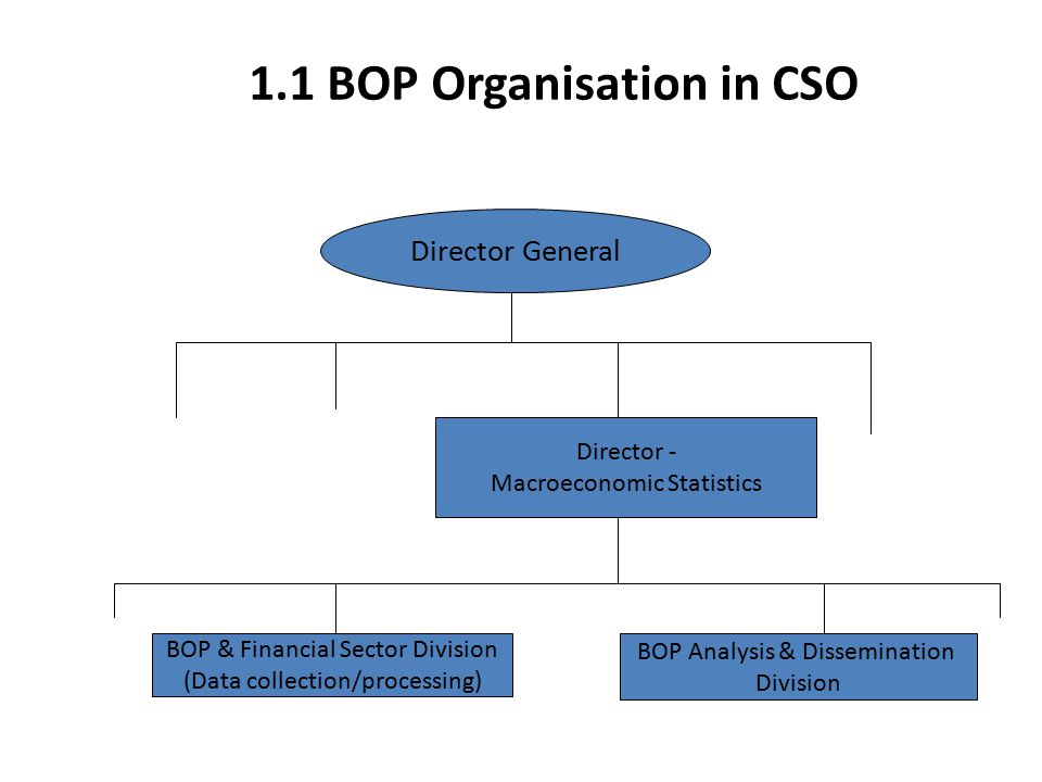 1.2 CSO BOP Compilation Responsibility BOP&FS Division è Maintenance of Survey Management System (SMS) è Conduct of surveys è Data processing BOP A&D Division è Analysis of overall quarterly BOP and IIP results, publication and dissemination of results è Publication and dissemination of FDI, PI and International Trade in Services statistics è Preparation of ECB monthly BOP estimates