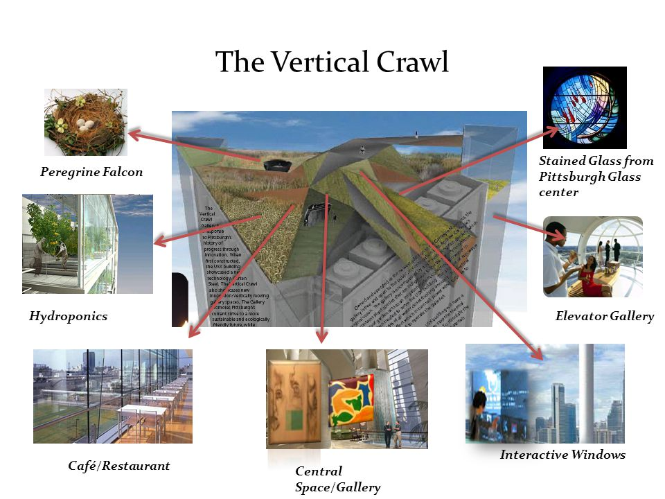 The Vertical Crawl Stained Glass from Pittsburgh Glass center Elevator Gallery Interactive Windows Central Space/Gallery Café/Restaurant Hydroponics Peregrine Falcon