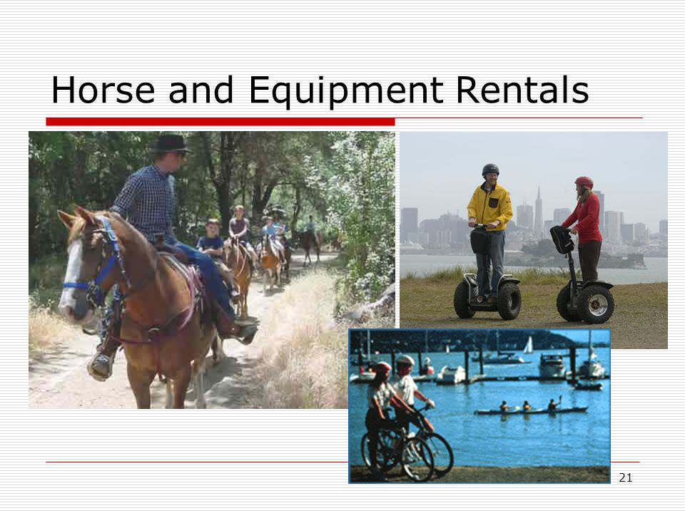 21 Horse and Equipment Rentals