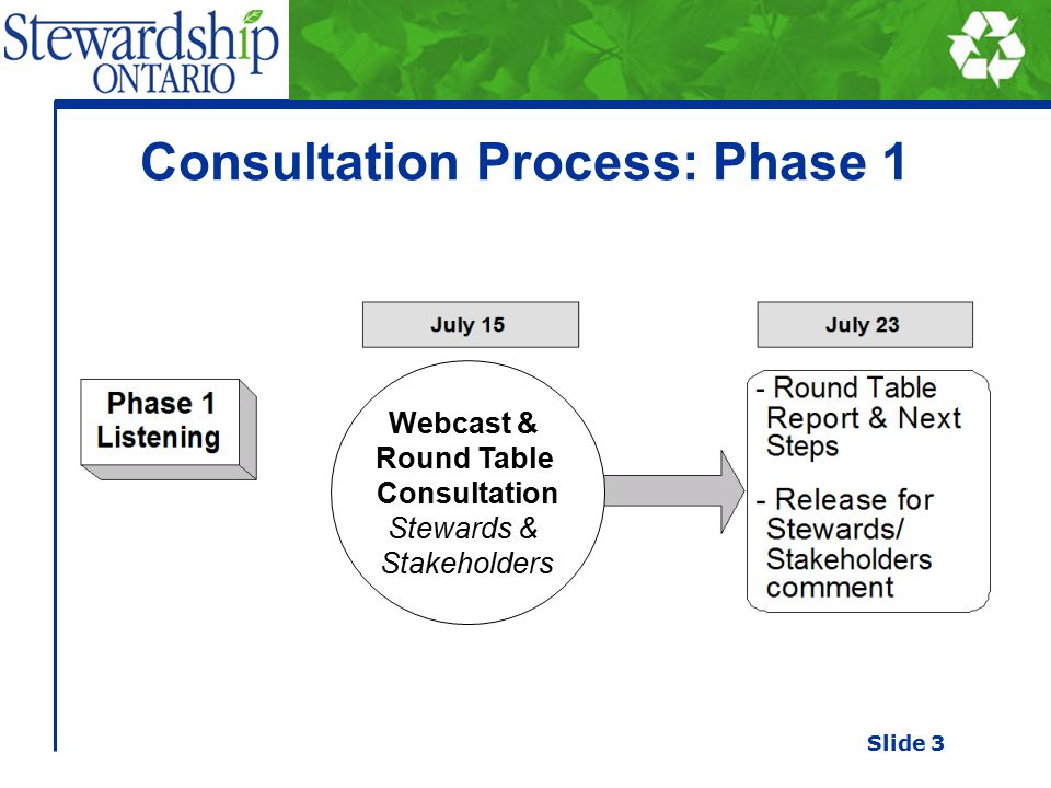 Consultation Process: Phase 1 Webcast & Round Table Consultation Stewards & Stakeholders Slide 3