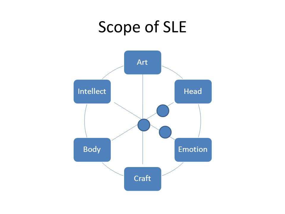 Scope of SLE ArtHeadEmotionCraftBodyIntellect
