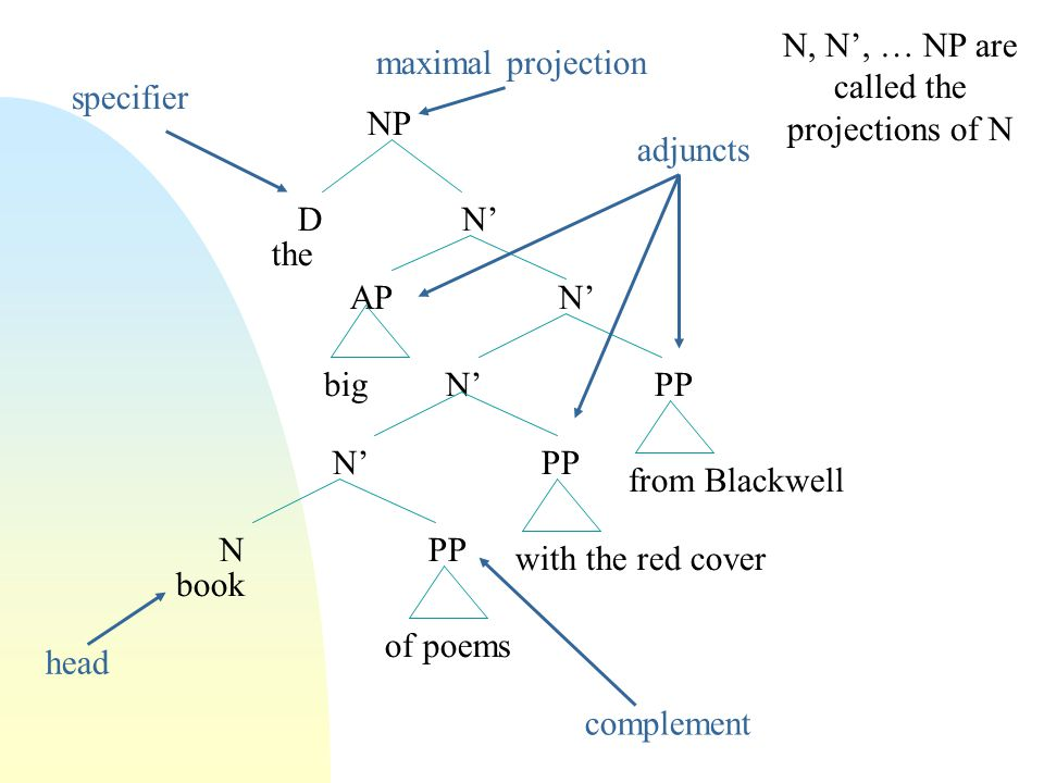 NP D N' APN' N'PP N PP the big of poems with the red cover from Blackwell book head specifier maximal projection adjuncts complement N, N', … NP are called the projections of N