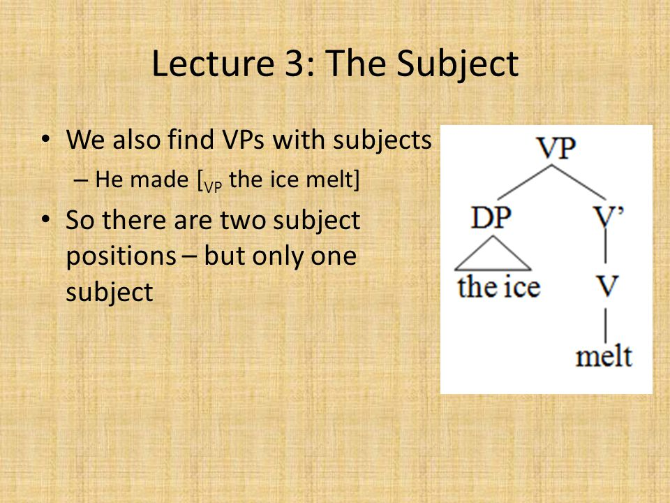 Lecture 3: The Subject We also find VPs with subjects – He made [ VP the ice melt] So there are two subject positions – but only one subject