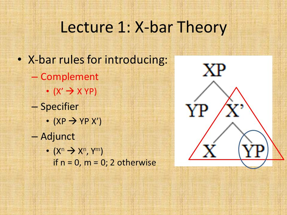 Lecture 1: X-bar Theory X-bar rules for introducing: – Complement (X'  X YP) – Specifier (XP  YP X') – Adjunct (X n  X n, Y m ) if n = 0, m = 0; 2 otherwise
