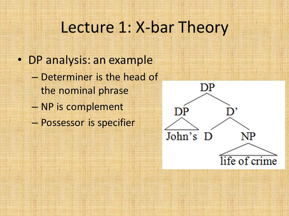 Lecture 1: X-bar Theory DP analysis: an example – Determiner is the head of the nominal phrase – NP is complement – Possessor is specifier