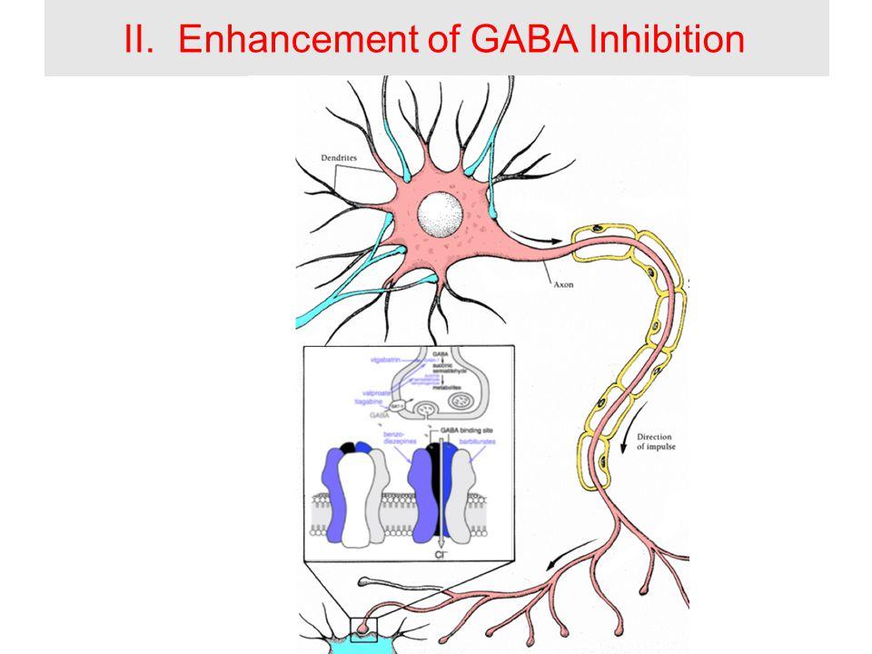 II.Enhancement of GABA Inhibition
