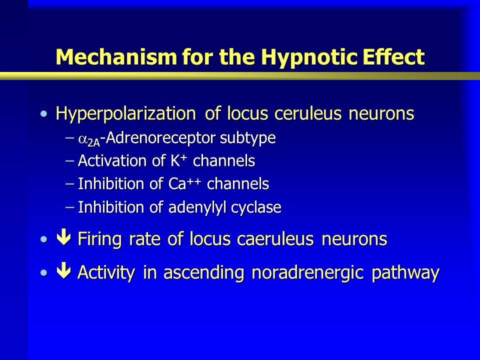 Mechanism for the Hypnotic Effect Hyperpolarization of locus ceruleus neuronsHyperpolarization of locus ceruleus neurons –  2A -Adrenoreceptor subtyp