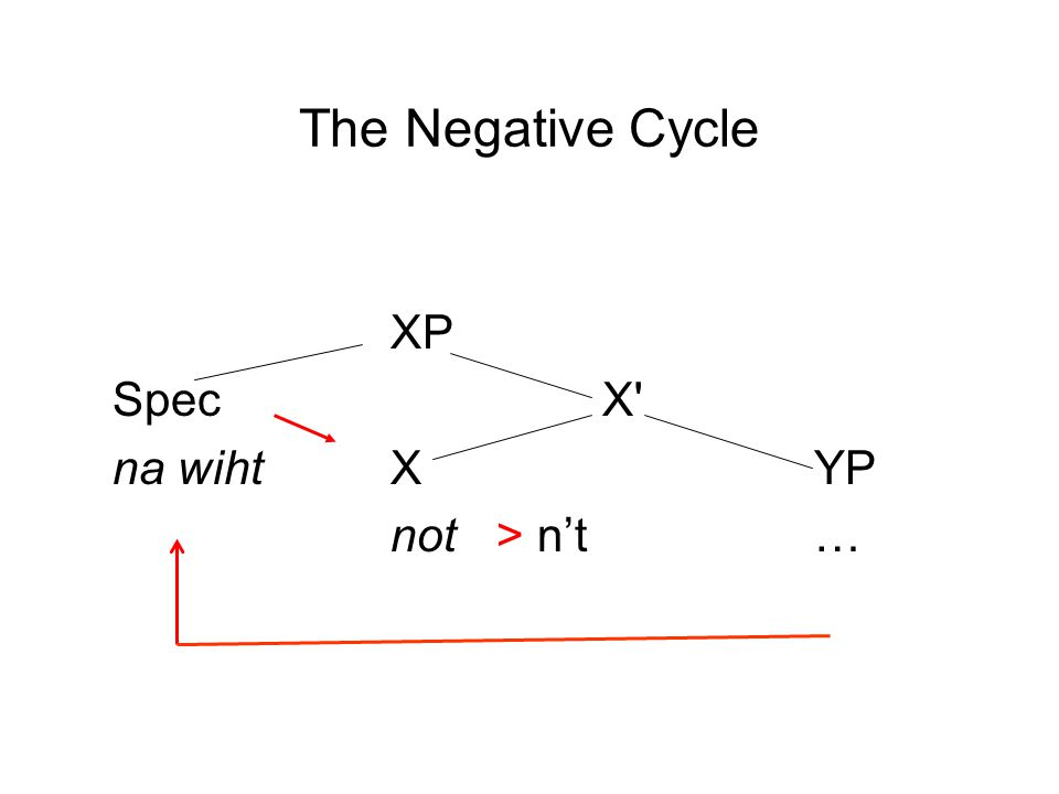The Negative Cycle XP SpecX' na wihtXYP not> n't…