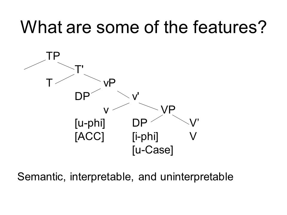 What are some of the features? TP T' TvP DPv' vVP [u-phi]DPV' [ACC][i-phi]V [u-Case] Semantic, interpretable, and uninterpretable