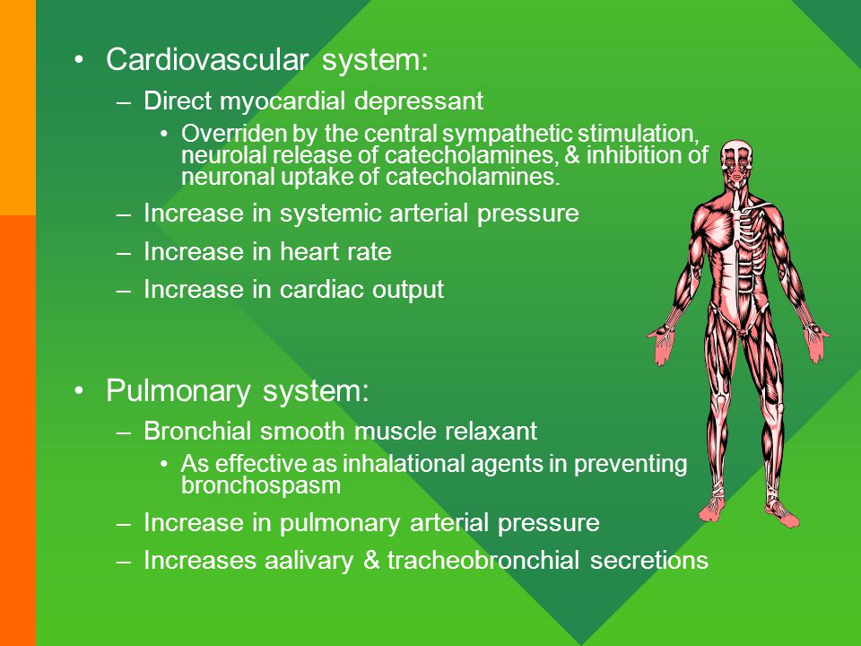 Cardiovascular system: –Direct myocardial depressant Overriden by the central sympathetic stimulation, neurolal release of catecholamines, & inhibitio