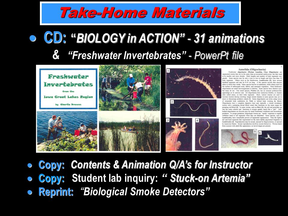 Take-Home Materials  CD: BIOLOGY in ACTION - 31 animations - PowerPt file  CD: BIOLOGY in ACTION - 31 animations & Freshwater Invertebrates - PowerPt file  Copy: Contents & Animation Q/A's for Instructor  Copy: Stuck-on Artemia  Reprint:  Copy: Contents & Animation Q/A's for Instructor  Copy: Student lab inquiry: Stuck-on Artemia  Reprint: Biological Smoke Detectors
