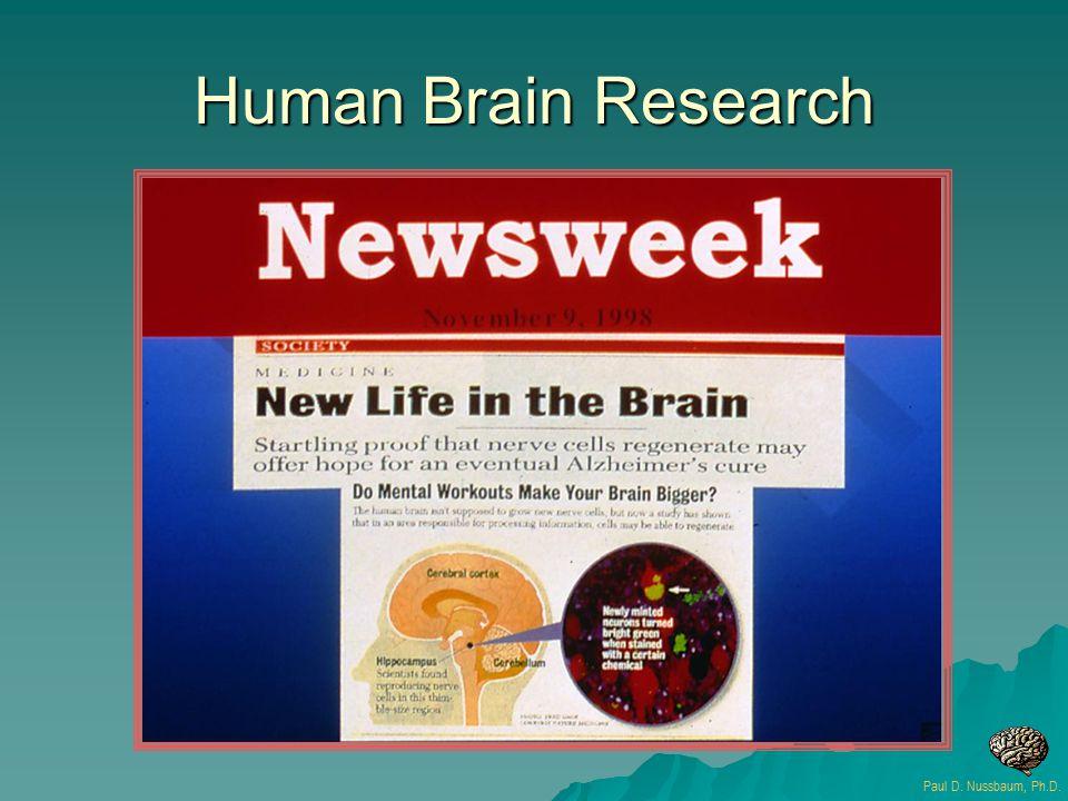 Human Brain Research Paul D. Nussbaum, Ph.D.