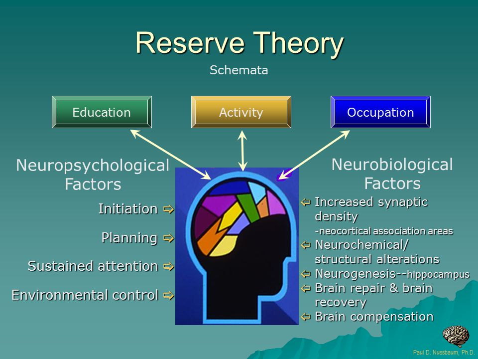 Reserve Theory Initiation  Planning  Sustained attention  Environmental control  Paul D. Nussbaum, Ph.D. Schemata Neuropsychological Factors Neuro