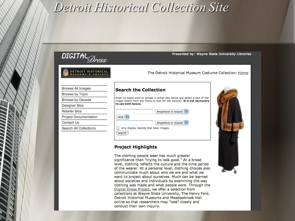 Detroit Historical Collection Site